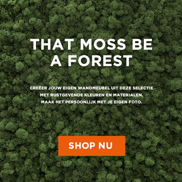 That moss be a forest uni color2.jpg